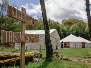 Weddings, weddings, weddings